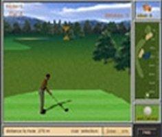 Profesyonel Golf